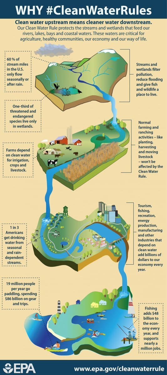 Diagram showing interconnectivity of of streams, wetlands and lakes in watersheds.