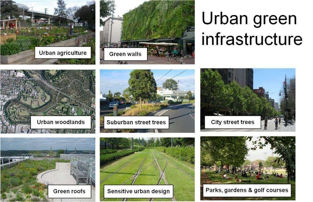 Series of images showing green infrastructure applications in an urban setting.